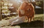 79 подписей, чтобы запечатлеть личность вашей собаки идеально для Instagram