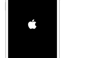 не работает звук iPhone — что делать