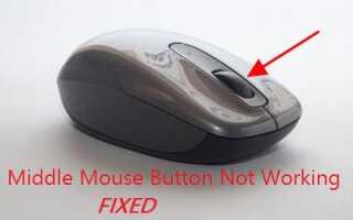 Средняя кнопка мыши не работает [Исправлено] — Лучшие решения