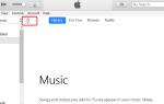 iPhone не отображается в iTunes в Windows