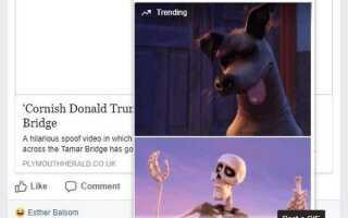 Как опубликовать GIF на Facebook
