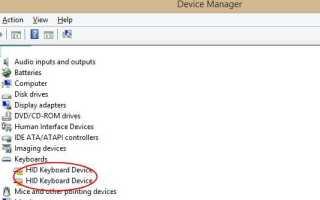 HID Keyboard Device Driver легко скачивает и обновляет