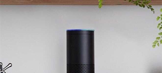 Как слушать iTunes с помощью Amazon Echo